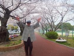 満開の桜に万歳!