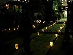 宇賀神社にもほっとな明かりが♪