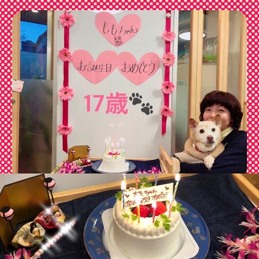 桃の17歳誕生日♪