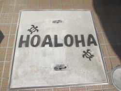 ☆HOALOHA☆